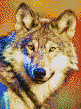 Grey Wolf - Framed Mosaic Wall Art
