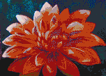 The Dahlia - Framed Mosaic Wall Art