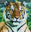 Siberian Tiger - Framed Mosaic Wall Art