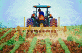 Tractor cultivating soybeans - Framed Mosaic Wall Art