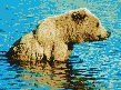 Brown Bear in Creek - Framed Mosaic Wall Art